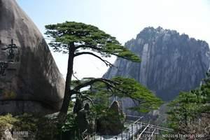 广州出发到华东五市|黄山,杭州,乌镇,上海双飞五天|华东旅游