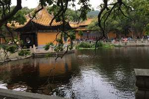 宁波普陀山跨海大桥高铁+卧铺四日游