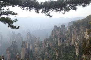 <广州到张家界高铁4天>含天门山国家森林公园 凤凰古城