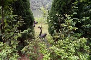合肥到泰国柬埔寨旅游 泰国柬埔寨四飞九日游