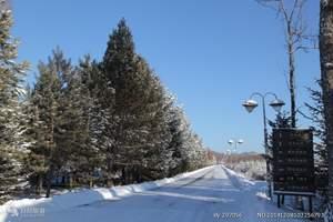 冬季的林都伊春--五营国家森林公园+库尔滨雾凇+梅花山三日游