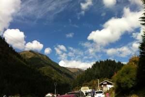 【兰州周边旅游】康县|西峡颂|阳坝|汽车三日游