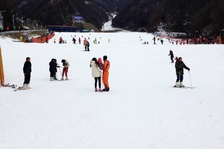 洛阳出发到【伏牛山滑雪】一日游