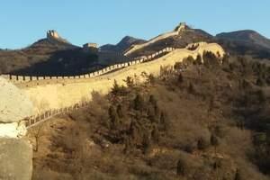 北京八达岭长城+野生动物园一日游