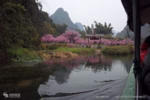 2016去巴马 桂林、阳朔、巴马、百鸟岩、长寿村精华6日游