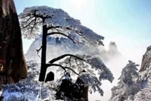 扬州-芙蓉谷、宏村、西递+石林、关麓、 黟县古城、屯溪三日游