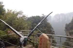 张家界森林公园+袁家界+杨家界+大峡谷玻璃桥+凤凰古城三日游