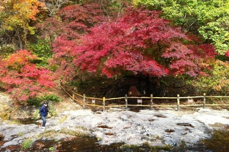 【賞紅葉】洛陽出發到鞏義長壽山 +風情小鎮一日游