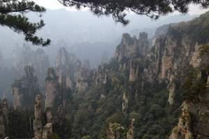 武汉到张家界旅游 张家界森林公园·大峡谷玻璃桥双高4日游