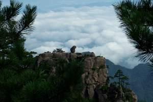 黄山1晚2日纯玩游丨住山顶、看云海日出