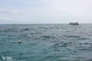 澳洲旅游、澳洲自由行、去澳洲外海大堡礁黄金海岸8天深度品质游