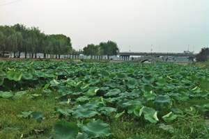 【北京京郊游】密云:白河原生态漂流 BBQ自助烧烤 一日游