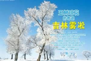 青岛旅行社_青岛出发去哈尔滨-雪乡-吉林雾凇岛六日游【摄影】