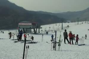 青岛金山滑雪一日游 天 天 发 团