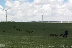 内蒙古草原线路.呼和浩特出发到辉腾锡勒大草原、响沙湾2日游