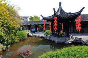 扬州到溱潼古镇赏茶花、溱湖一日游