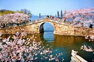 扬州到无锡鼋头渚、太湖仙岛赏春一日游