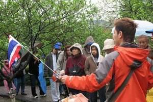 南宁旅游专业导游讲解_南宁导游带团一天多少钱