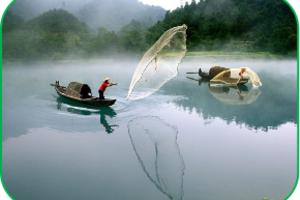 企业公司包团三天游去哪好 深圳到郴州东江湖莽山三天高铁团