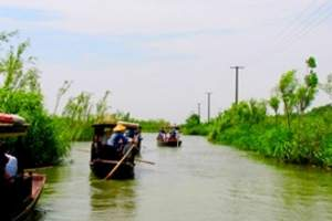 扬州到泰州凤城河、望海楼、乔园、桃园、溱潼古镇/溱湖一日游