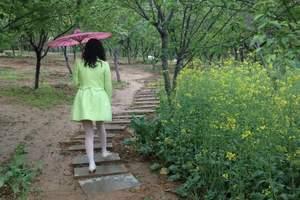 从化最美乡村、竹林漫步、影古线赏花徒步一日游_省内赏花一日游