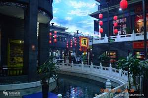 新乡春游到开封东京极地海洋馆、汴京动物园、小宋城美食街一日游