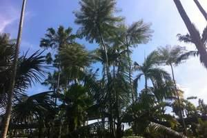 呼和浩特到泰国旅游 从呼和浩特到泰国、曼谷、芭堤雅双飞8日游