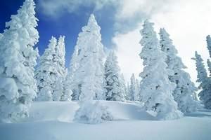 南宁到哈尔滨旅游哪个团好_哈尔滨、亚布力、冰河雪谷纯玩六日游