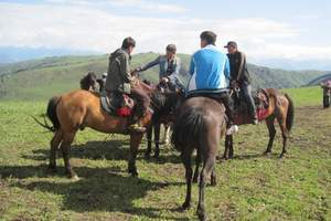 乌鲁木齐:天池 吐鲁番 赛湖 喀拉峻 那拉提巴音布鲁克九日游