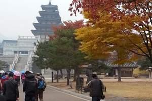 【4人立减400】首尔+济州双乐园5日游-乐天世界+泡菜体验