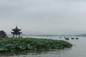 合肥到杭州旅游 杭州西湖水乡乌镇西溪湿地花朝节夜游西塘2日
