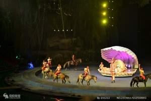 长隆旅游、广州长隆动物园世界、国际大马戏、长隆欢乐世界两天游