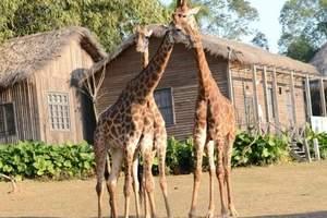 南宁到广州长隆水上乐园、野生动物园、欢乐世界三天游