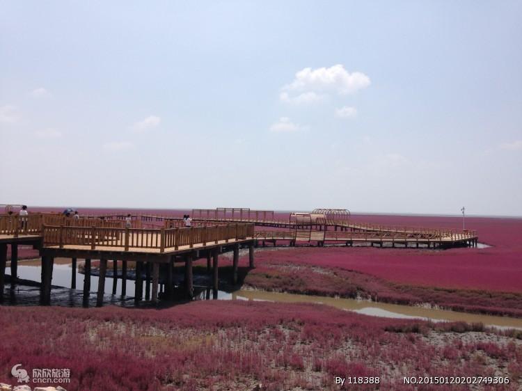 红海滩图片