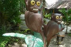 厦门旅行社-厦门出发到宿务+薄荷岛浪漫六日游(菲律宾旅游签证