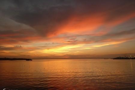 菲律宾宿务、薄荷岛四飞7日游-竹筏漂流+迷你眼睛猴+海豚寻踪