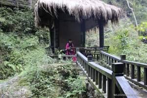 武汉报团去安徽蓬莱仙洞+牯牛降汽车二日游-醉美原始森林