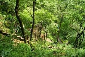 天河潭、青岩古镇、花溪湿地公园一日游