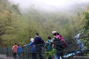 杭州出发临安<白水涧景区+竹林山间野炊>亲子一日游