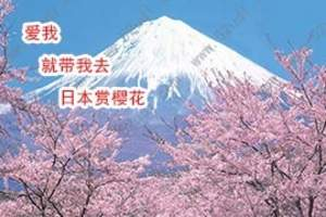 海南到日本旅游七日游  日本旅游玩什么