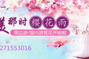 郑州去武汉看樱花黄鹤楼两日游_郑州旅行社排名