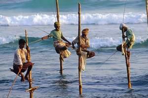 斯里兰卡康提古城+海滨双飞六天旅游, 斯里兰卡是哪个国家?