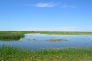 六月份大连去内蒙古旅游特色线路,乌拉盖天边草原九曲湾双卧五日
