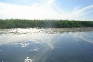内蒙古呼伦贝尔草原、满洲里口岸、红花尔基森林五日游