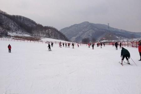 丹东到本溪东风湖滑雪一日游_本溪滑雪场滑雪游