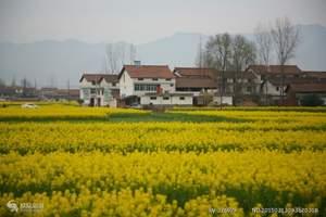 清明节银川到汉中赏油菜花、逛诸葛古镇 、游青木川汽车4日游