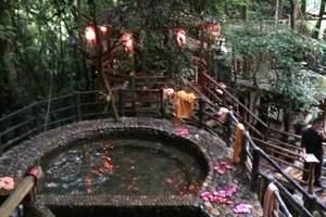 九州驿站树上温泉直通车纯玩二天游