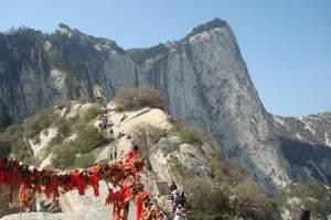 长春到西安旅游【西安兵马俑、华清池、华山、壶口瀑布五日游】