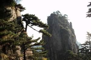 杭州到千岛湖+黄山2日游跟团报价-千岛湖黄山超值游散客班