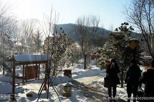 郑州冬季到哈尔滨旅游团「智取威虎山」哈尔滨亚布力雪乡双飞五日